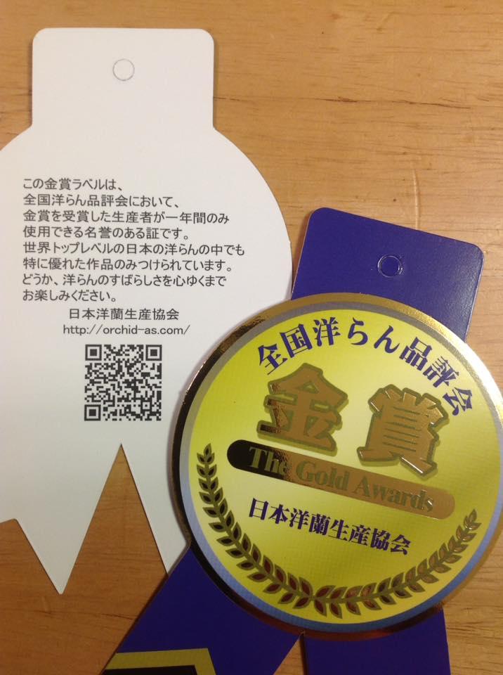 全国洋蘭品評会 2017年 金賞ラベル