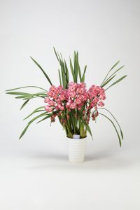 (株)花卉園芸新聞社賞